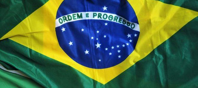 Какое место занимает Бразилия по…