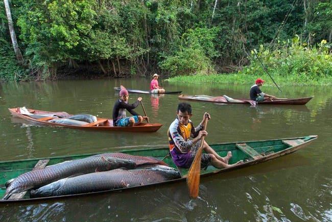 Рыболовство в Бразилии